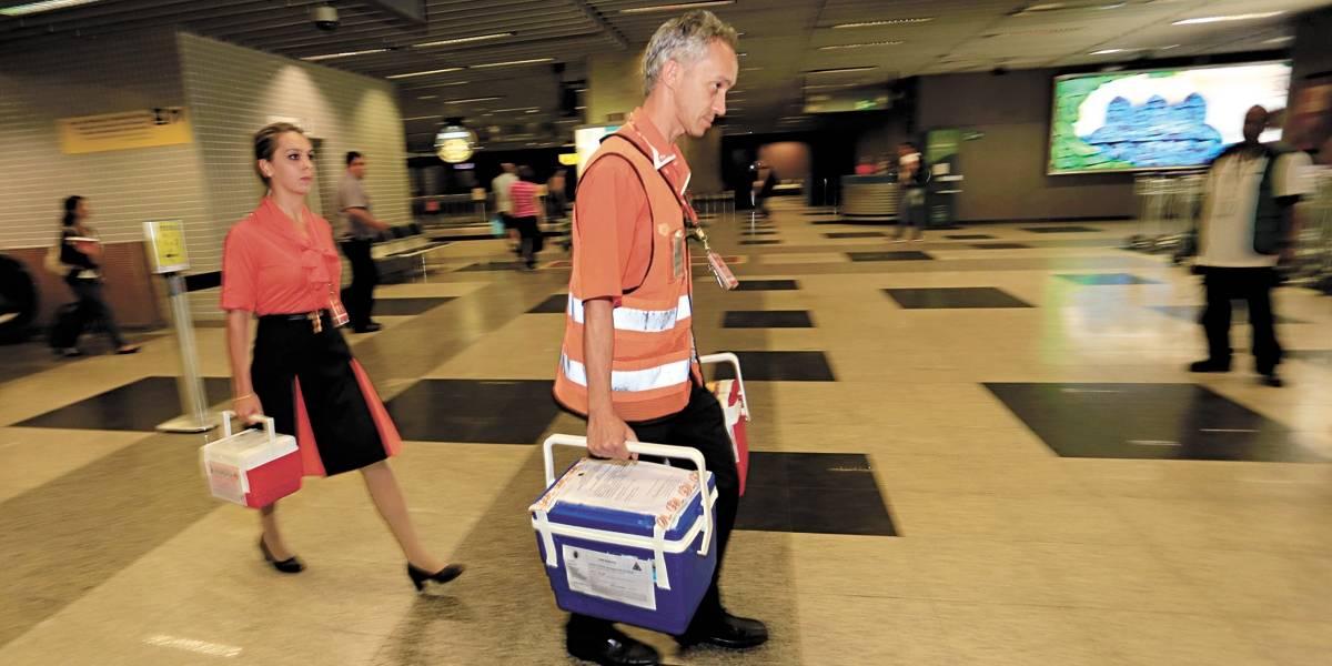 Asas do Bem: saiba como funciona o transporte aéreo gratuito de órgãos transplantados
