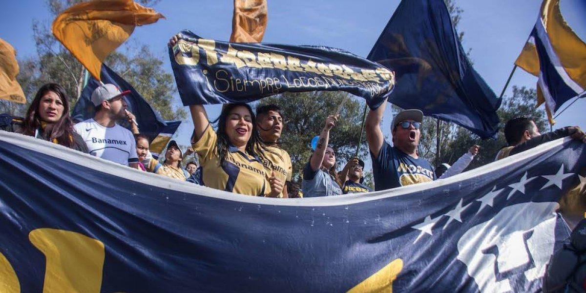 Afición de Pumas abarrota taquillas en busca de boletos para el Clásico