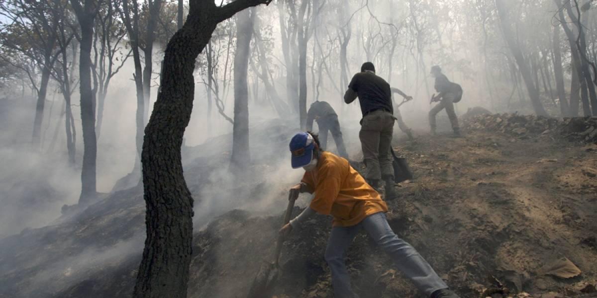 Jalisco tuvo en 2017 año crítico por incendios forestales