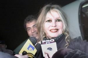 https://www.metrojornal.com.br/cultura/2018/01/17/bardot-acusa-atrizes-de-aticarem-produtores-por-papeis.html