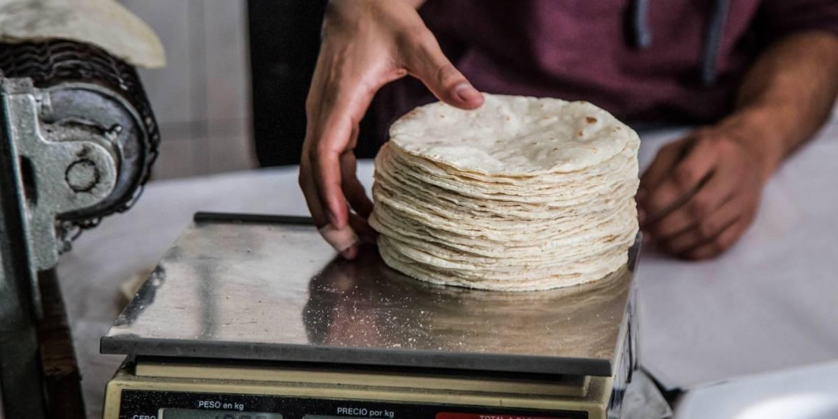 Kilo de tortilla cuesta hasta más de un dólar
