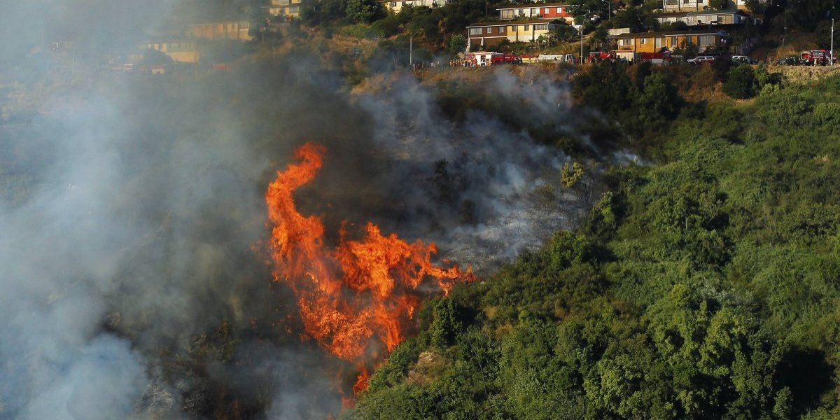 Onemi decretó alerta roja para Villa Alemana por incendio cercano a viviendas