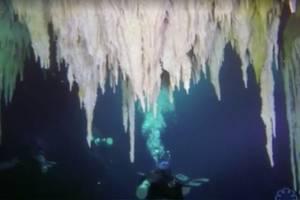 https://www.metrojornal.com.br/mundo/2018/01/21/mergulhadores-descobrem-maior-caverna-submersa-mundo.html