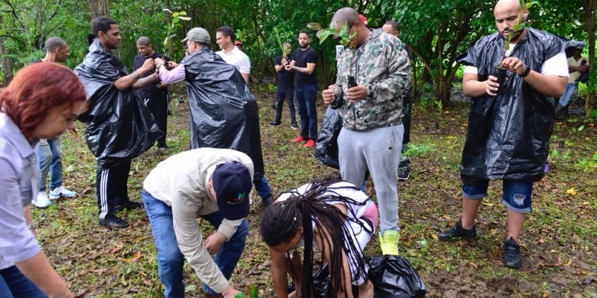 Artistas urbanos reforestan en la rivera del Río Ozama