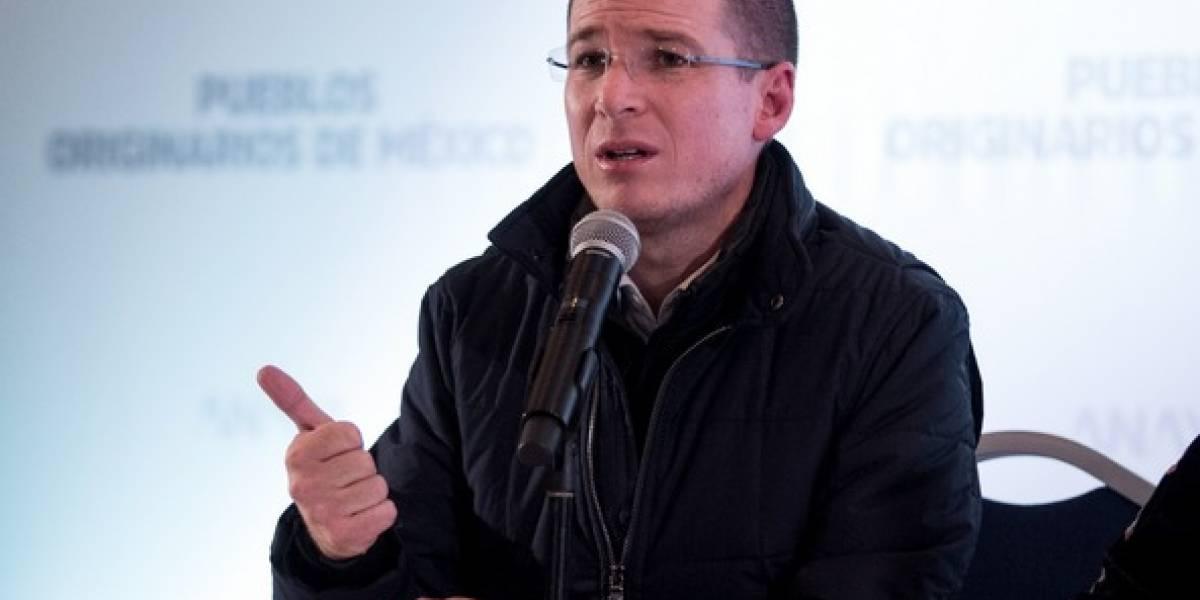 Ricardo Anaya, el joven imparable