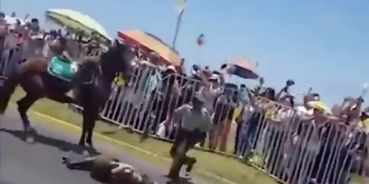 Tras caída de carabinera a caballo en visita del Papa en Iquique: ¿Por qué la policía sigue usando estos animales?