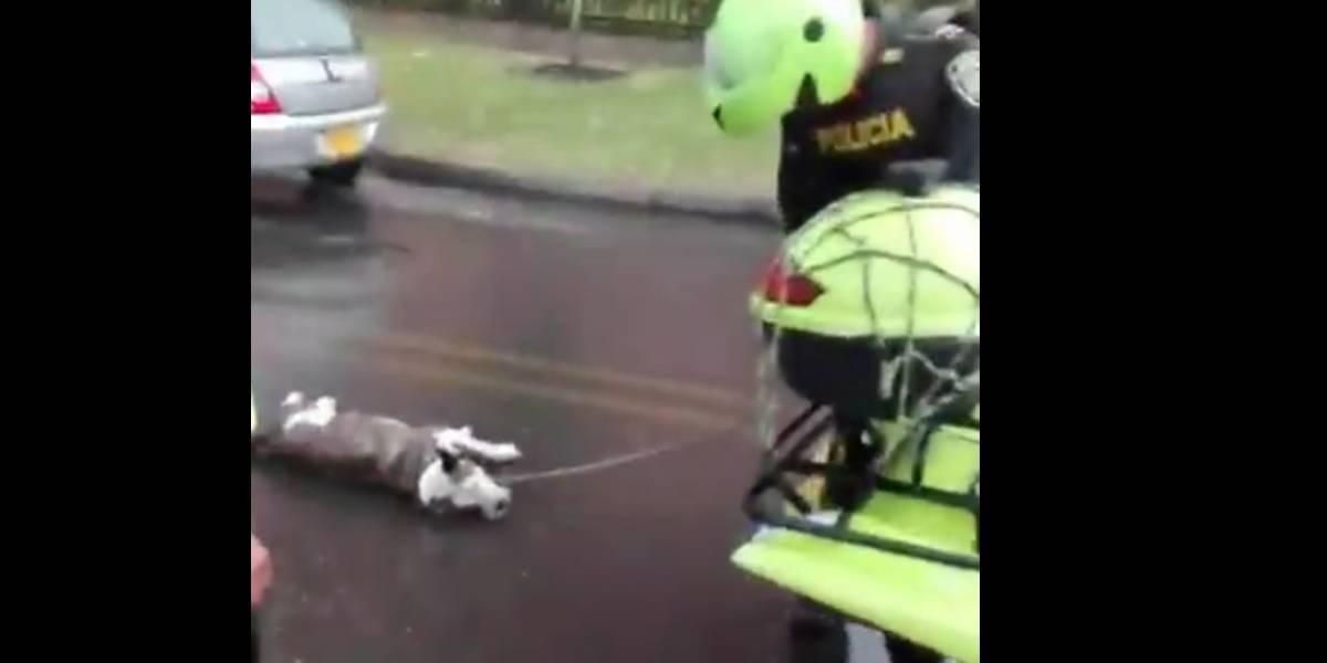 Video: denuncian a Policías que arrastraban a un perro con una moto amarrado del cuello