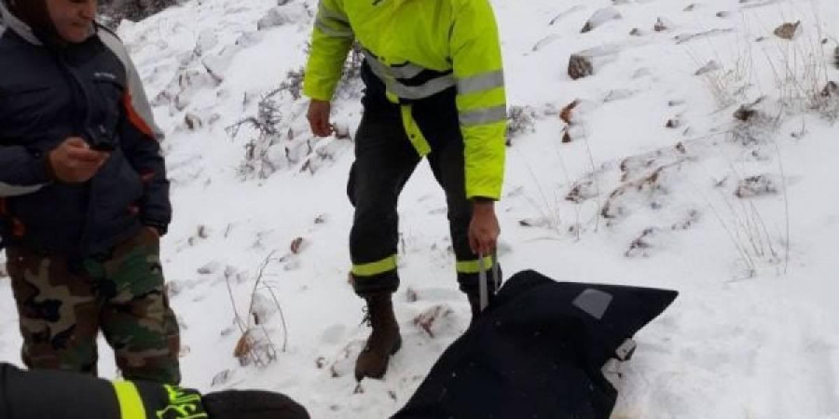 15 refugiados sirios mueren congelados por el frío en Líbano