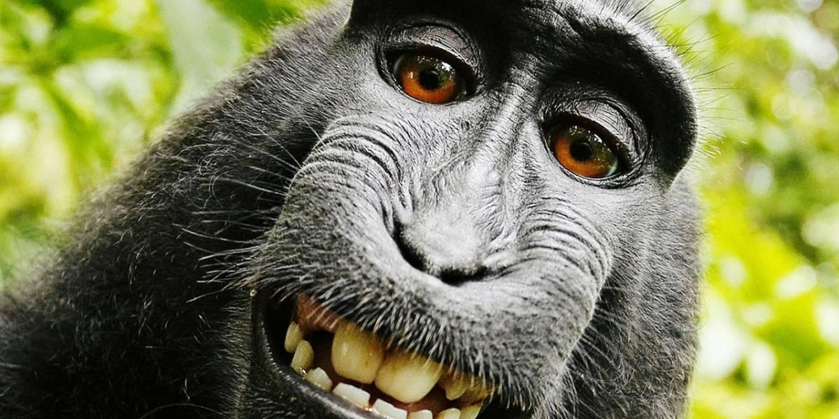 Los hombres que se toman más selfies son más propensos a ser psicópatas
