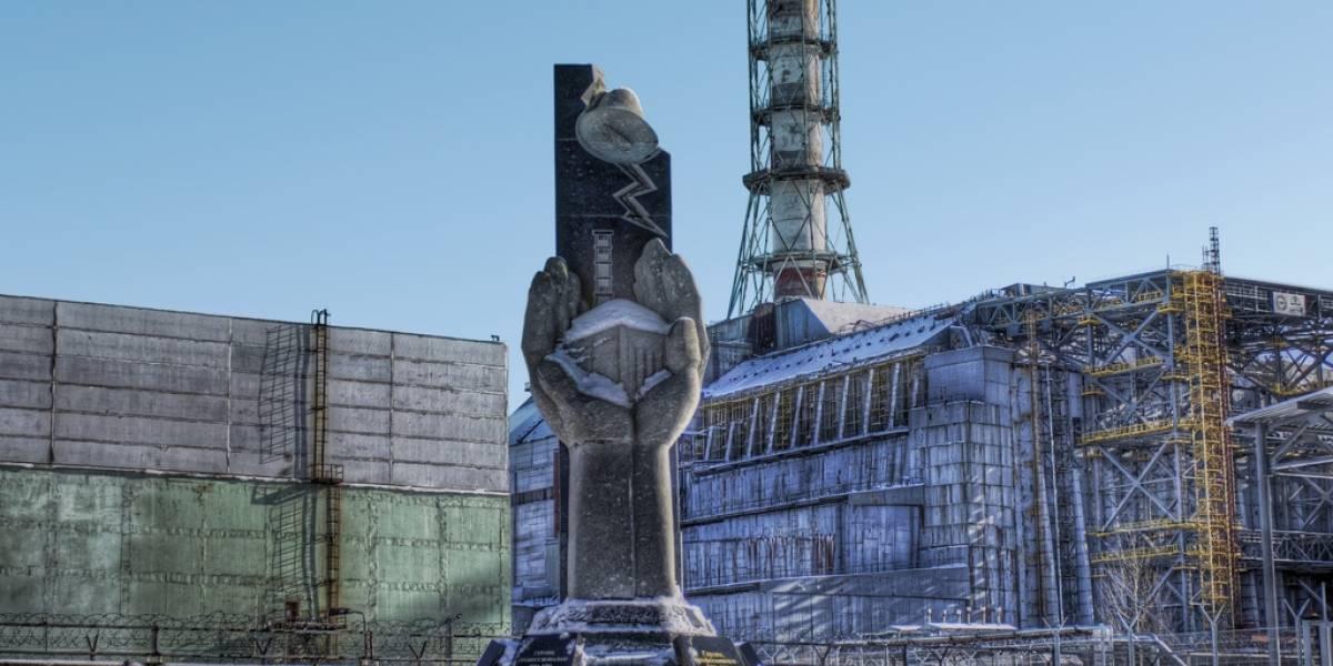 Pájaros de Chernóbil evolucionaron para soportar la radiación