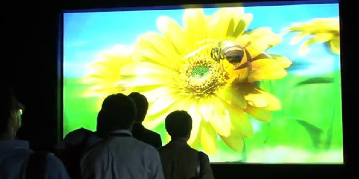 Observad la pantalla 3D sin gafas más grande del mundo