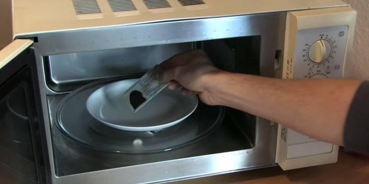 """Alemanes """"cocinan"""" sus identificaciones en microondas para no ser espiados por la NSA"""