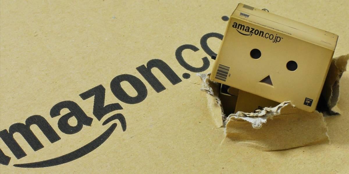 Amazon se cayó de la manera más rara posible