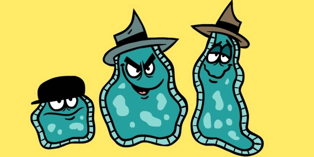 Podemos producir electricidad por medio del uso de bacterias