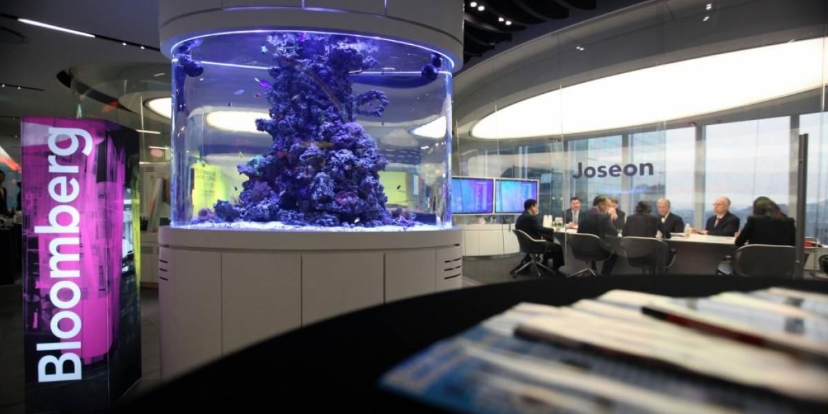 Bloomberg manejará los contenidos del canal de TV de Twitter