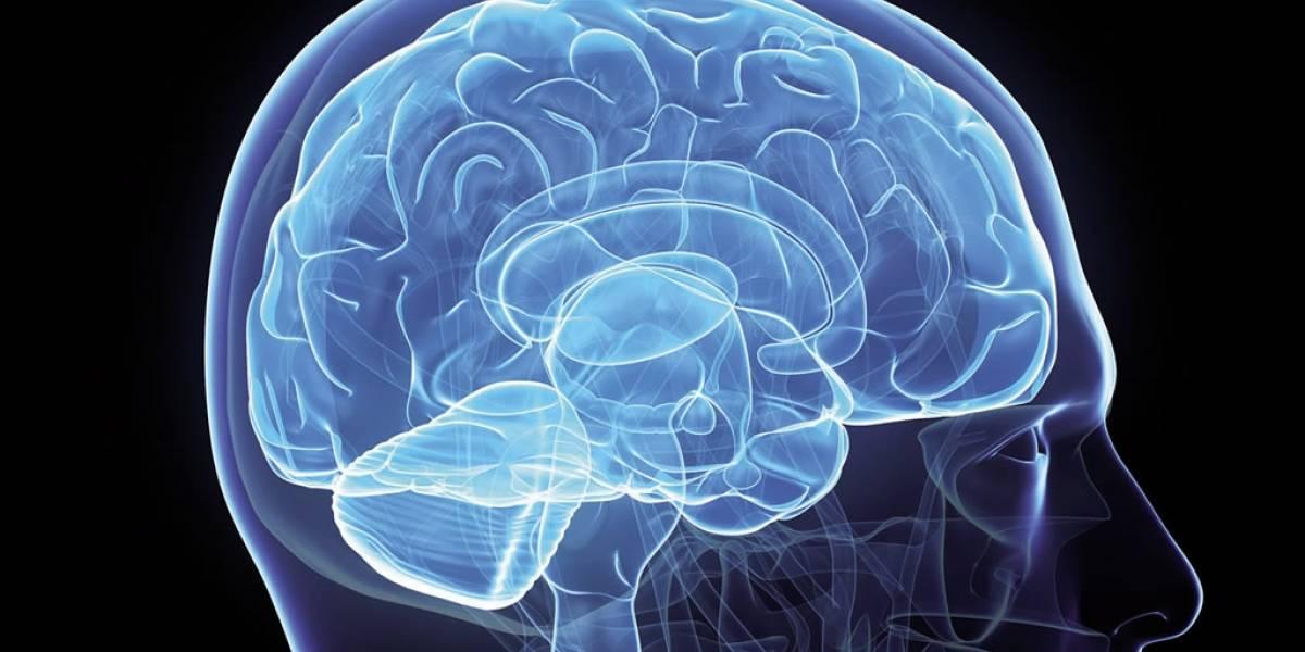 Proponen a nuestro cerebro como medida de seguridad para desbloquear dispositivos