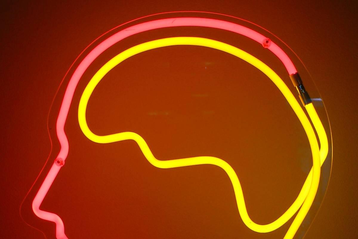 Investigadores descubren la parte del cerebro que regula el ritmo del habla