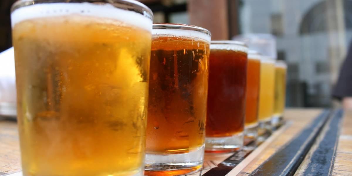 Immersion, un gadget para cerveceros artesanales