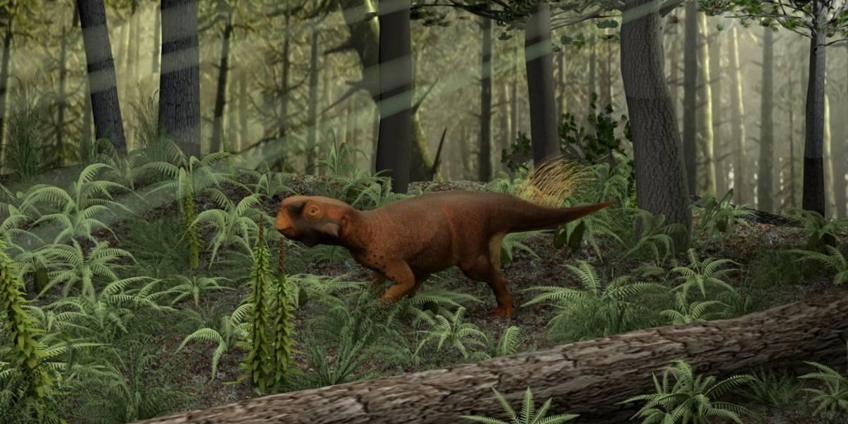 Científicos recrean dinosaurio en base a fósil con piel preservada