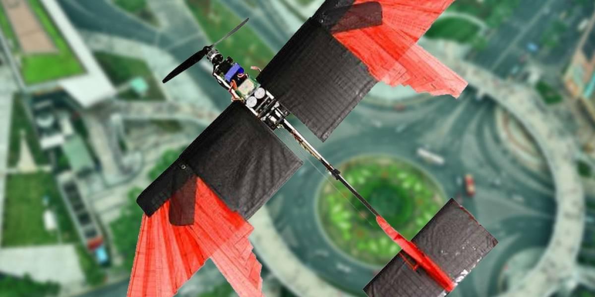 """Ingenieros construyen dron """"emplumado"""" que vuela mejor que todos"""
