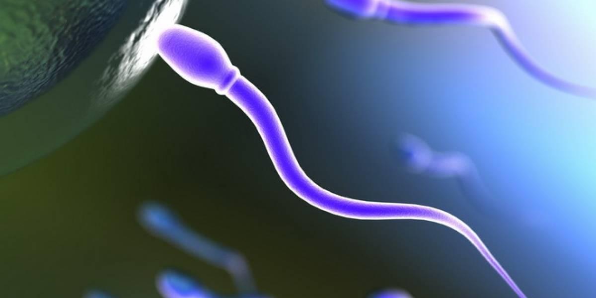Padres más viejos tienden a heredar más mutaciones