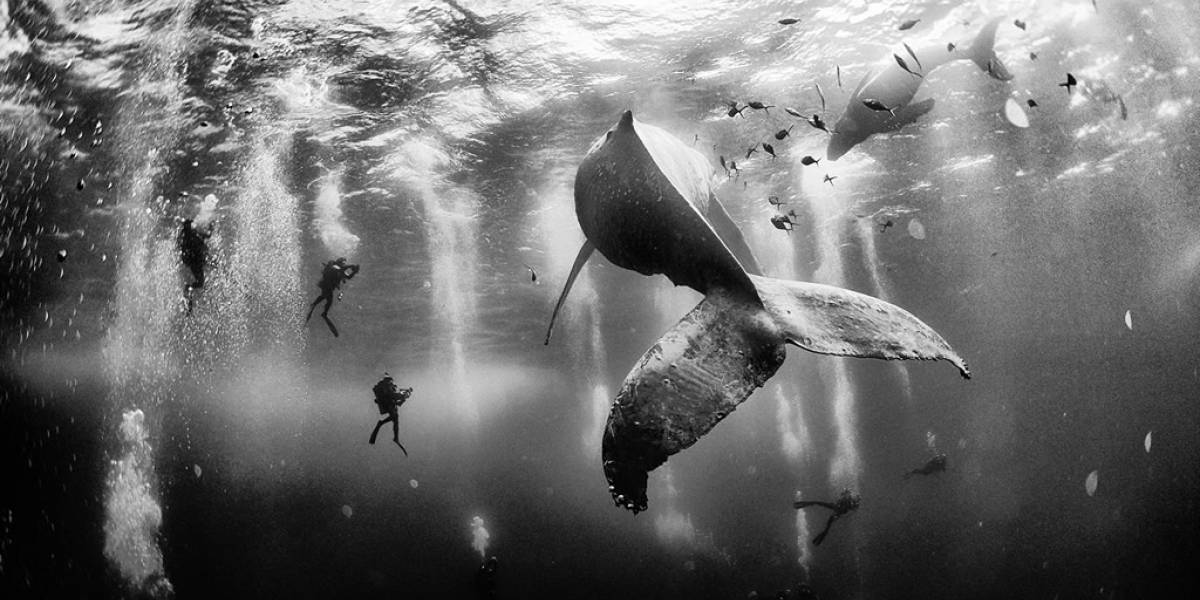Esta es la foto ganadora del National Geographic Traveler Photo Contest 2015