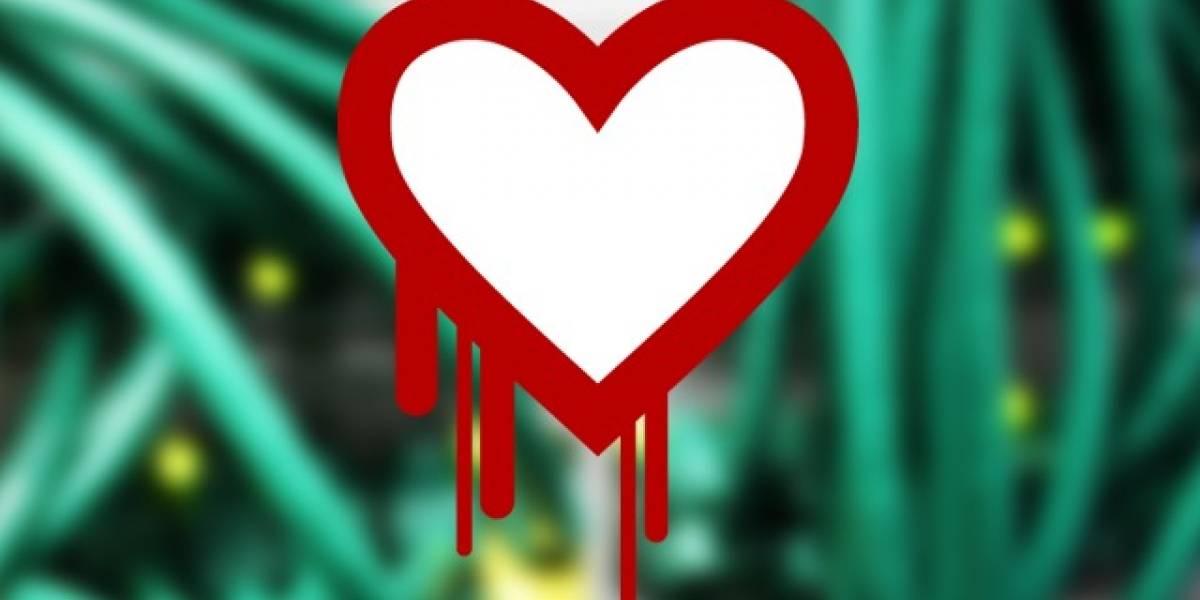 ¿Cómo revisar qué contraseñas cambiar a raíz del bug Heartbleed?