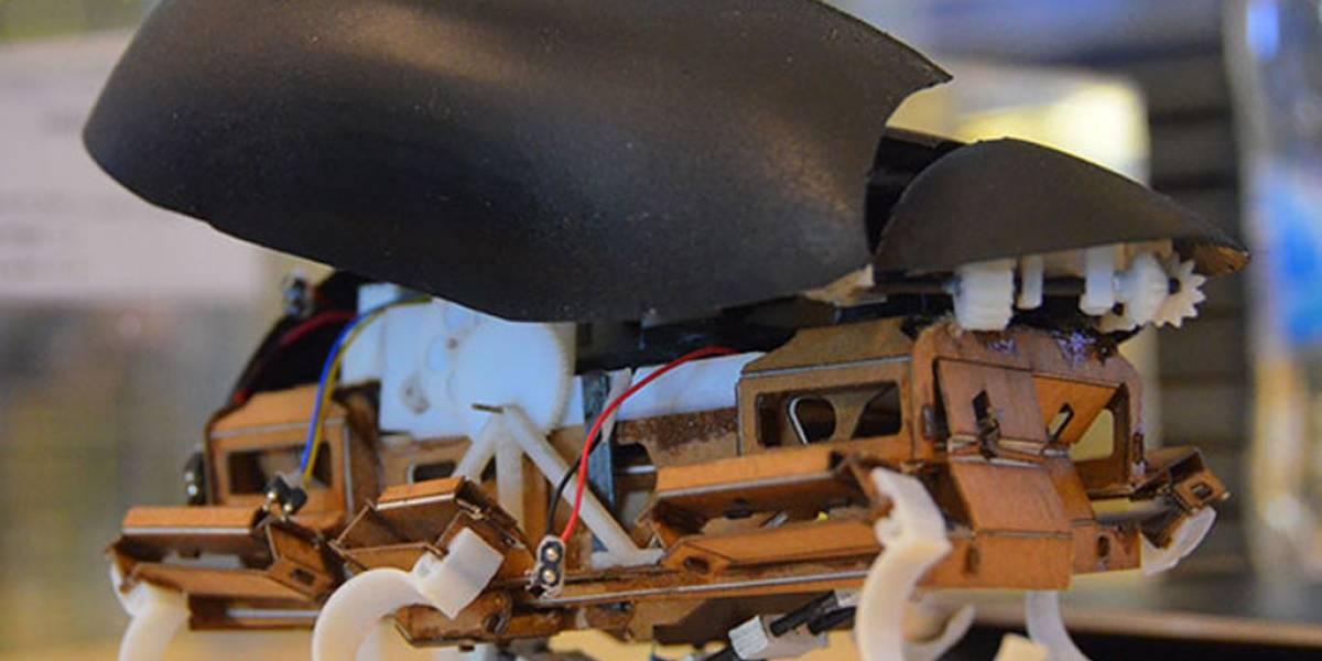 Esta cucaracha robótica puede dar grandes saltos