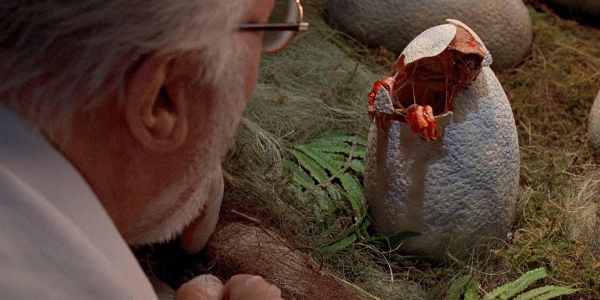 Treinta huevos de dinosaurios fueron encontrados en perfectas condiciones en China
