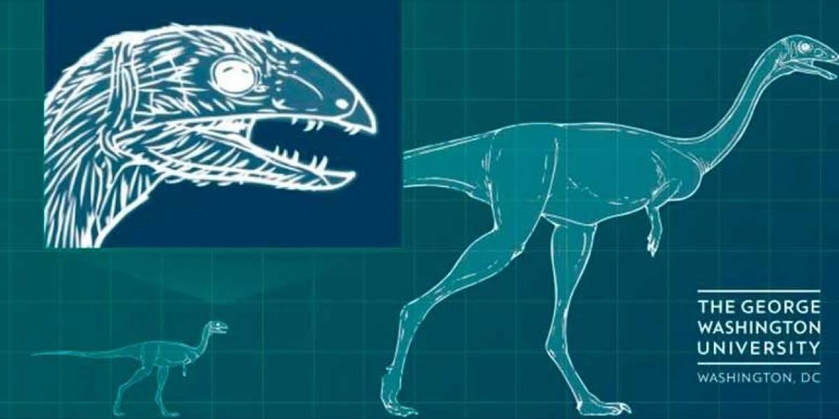 Científicos descubren dinosaurio que cambiaba su dieta para volverse herbívoro
