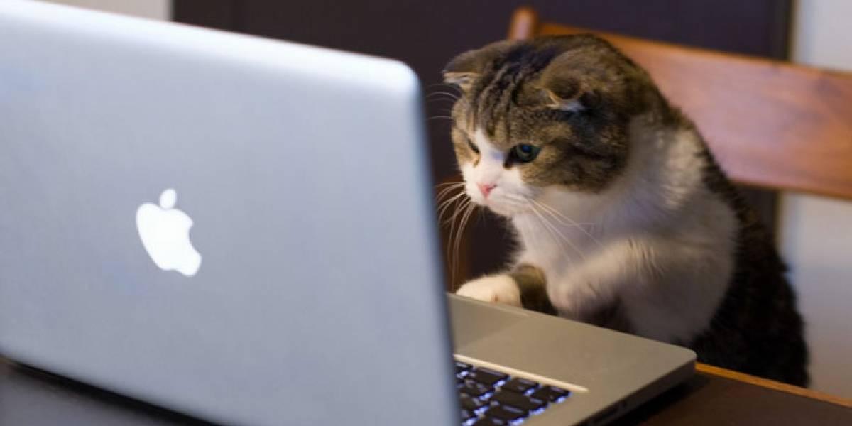 Ex empleado de la NSA encuentra método para hackear webcams de Mac
