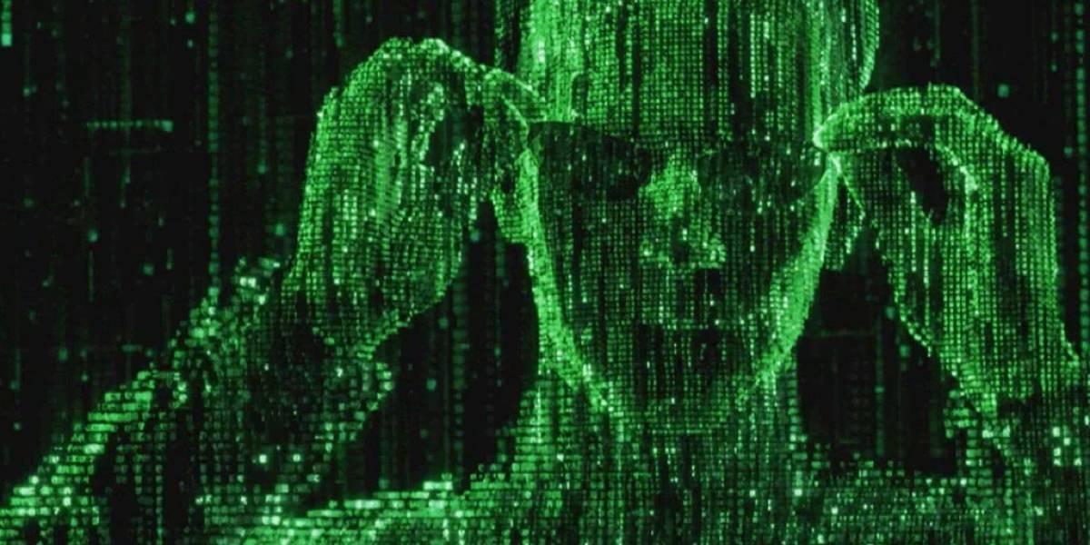"""Científicos desarrollan una """"malla electrónica"""" para conectar neuronas a una máquina"""