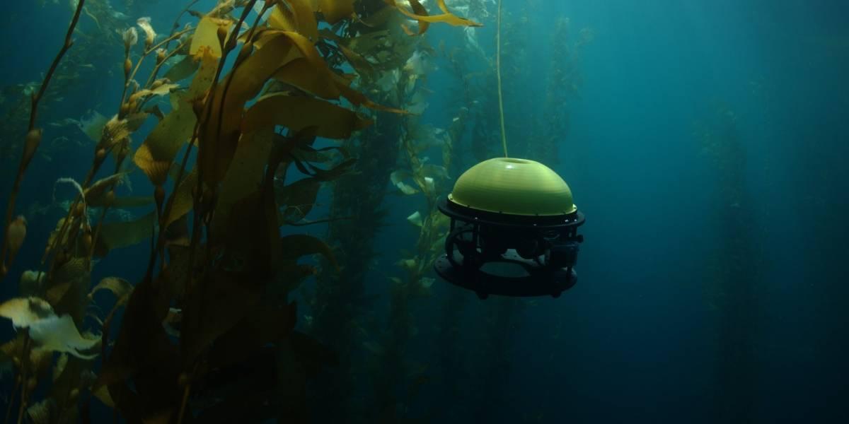 Conoce al nuevo dron submarino para profesionales y entusiastas