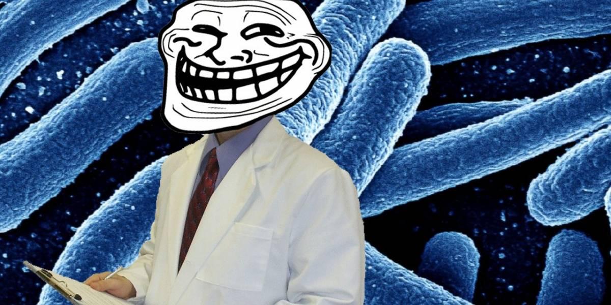 Científicos implantan GIF animado en una bacteria