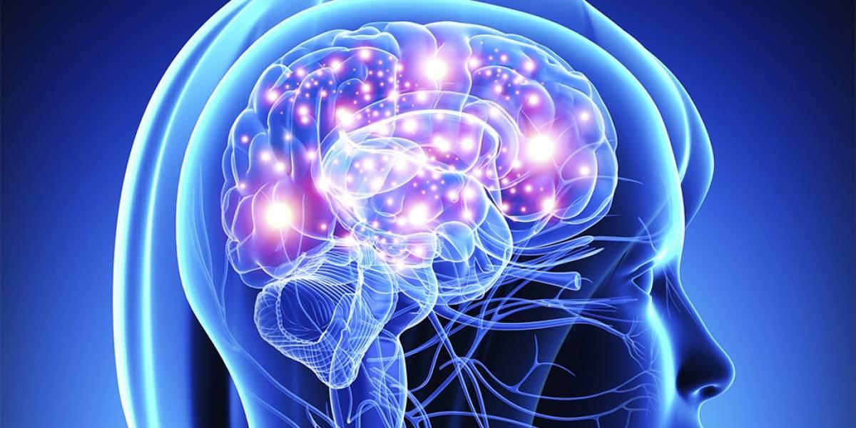 Compartir en redes sociales ayudaría a tu memoria según estudio