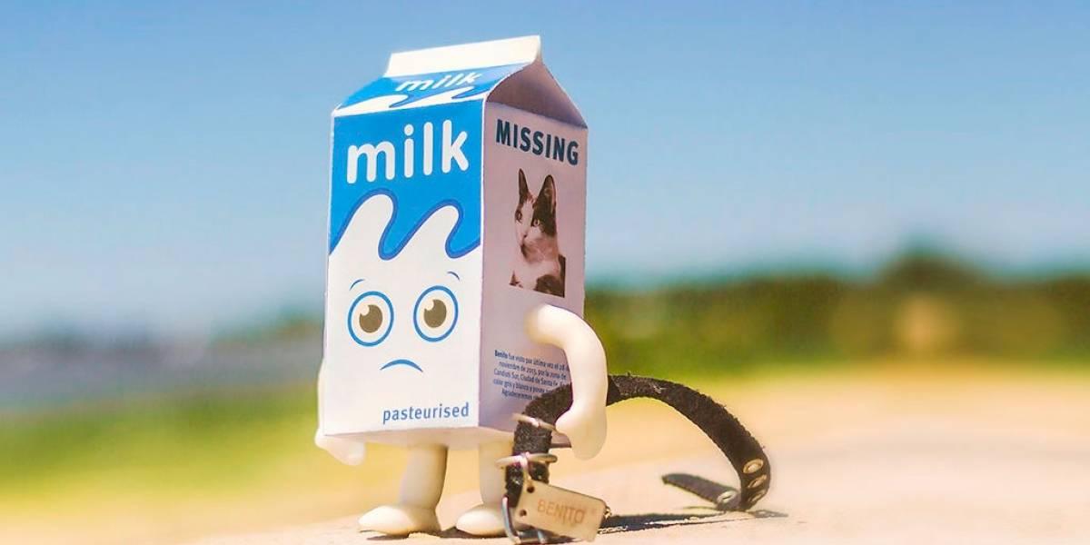 Científicos aseguran que la luz LED arruina el sabor de la leche