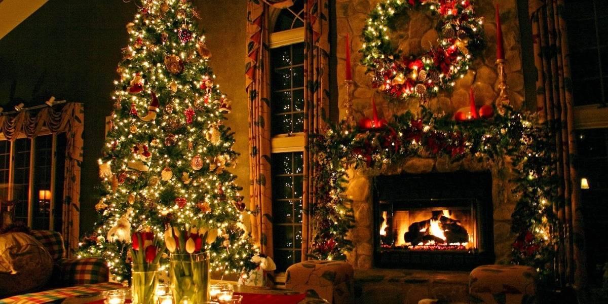 Científicos buscan el código genético perfecto para crear árbol de navidad
