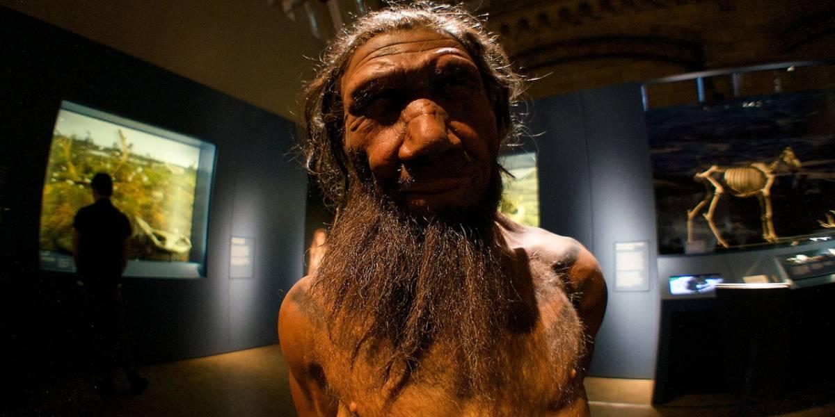Los humanos modernos pudieron prosperar sobre los Neandertales gracias a su resistencia al humo