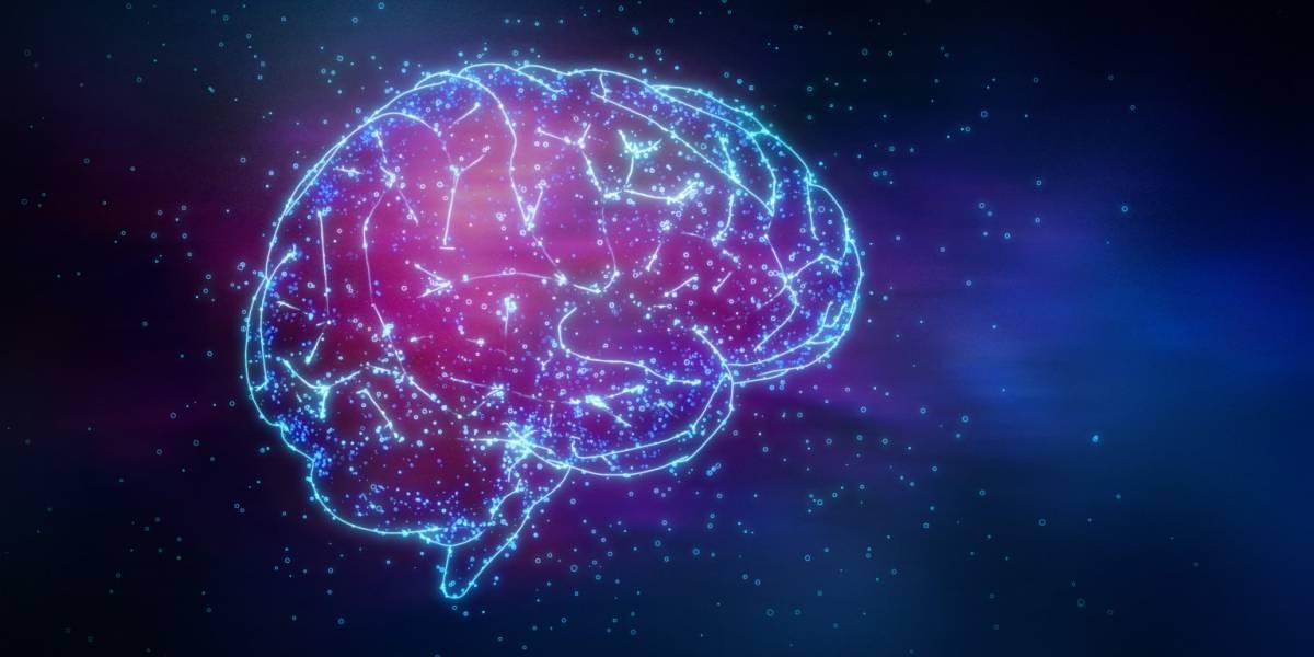 Científicos creen haber encontrado el lugar del cerebro donde se aloja la consciencia humana