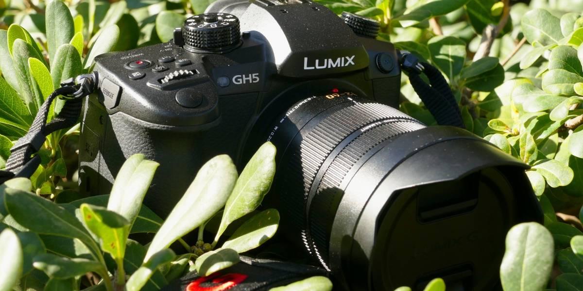 Tres cosas que me gustaron (y dos que odié) de la Lumix GH5 [FW Labs]