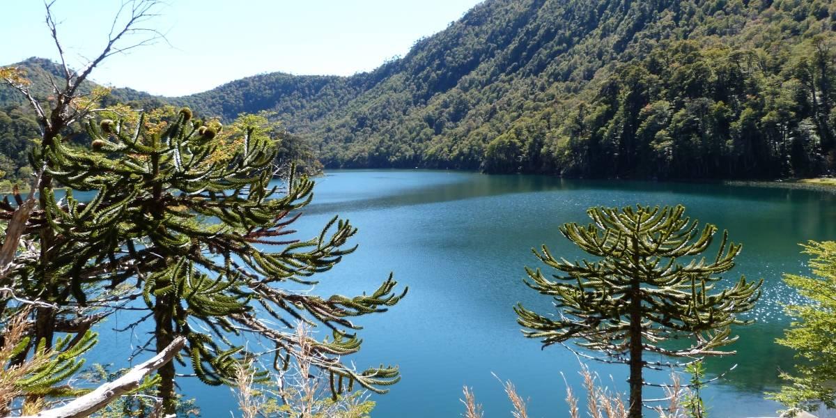 Wikitour 2014 busca fomentar el turismo en Chile