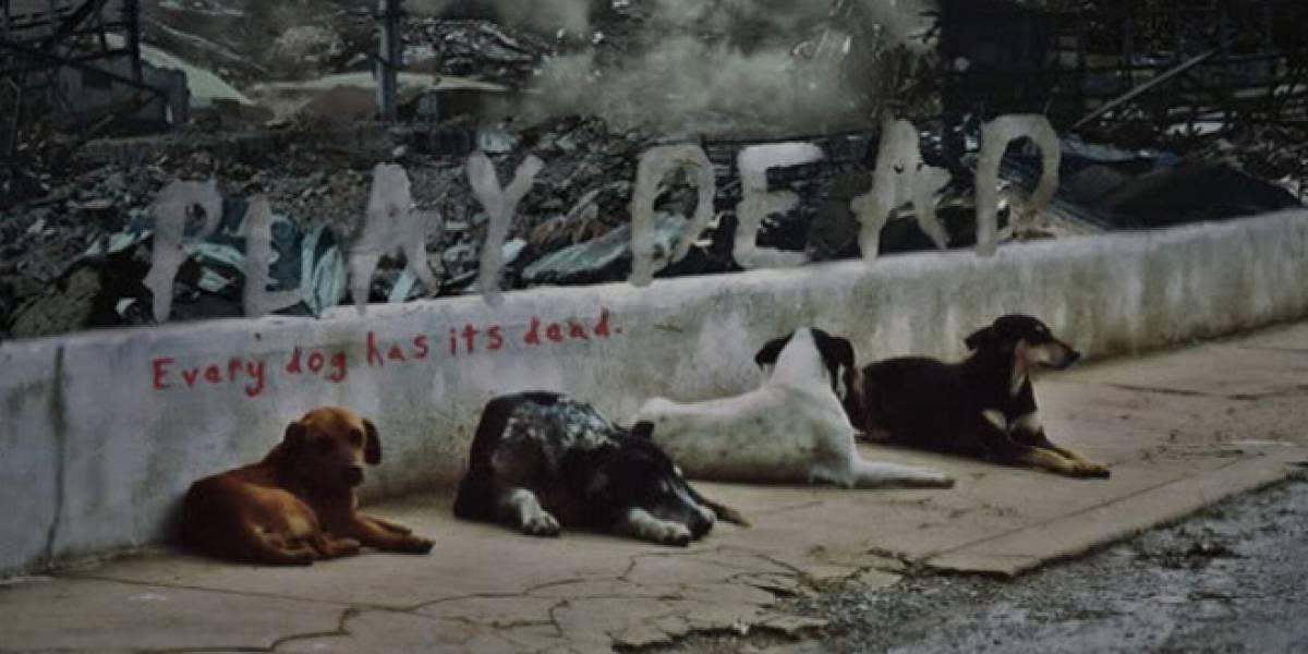 Cortometraje: ¿Qué pasaría si los perros fueran inmunes a los zombies?