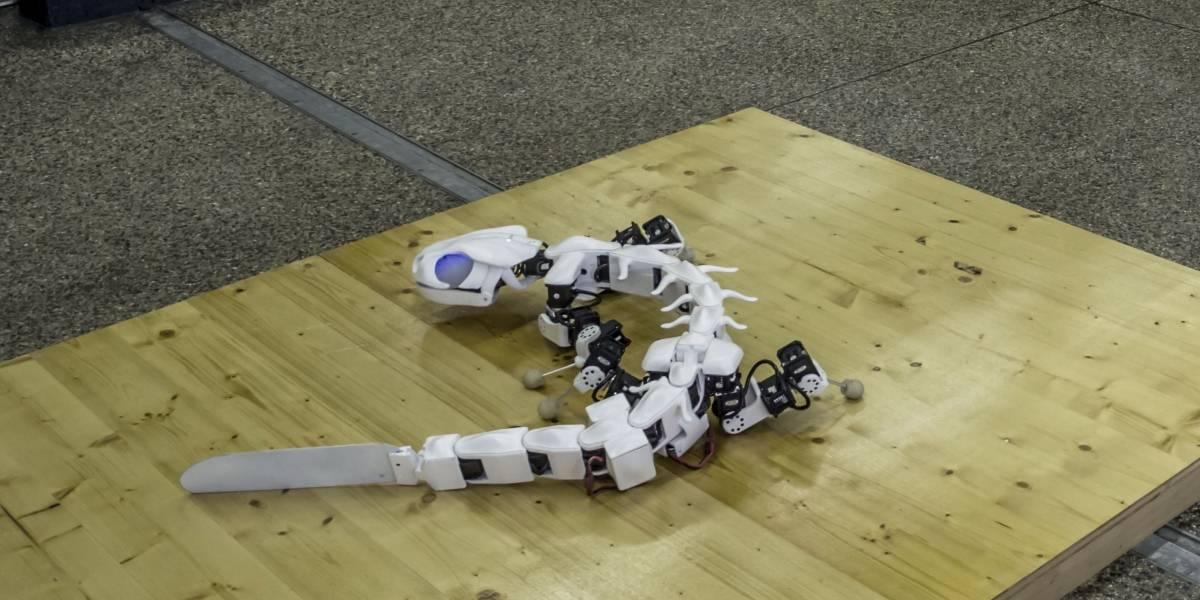 Este robot salamandra se mueve igual que una salamandra real