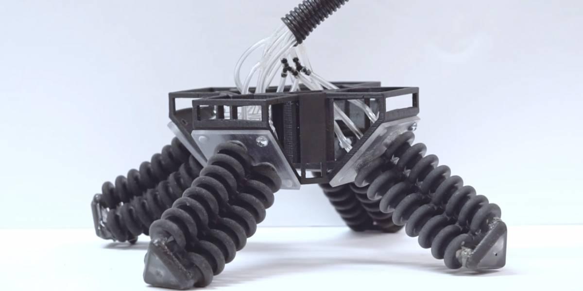 Universidad de California crea robot inspirado en una tortuga