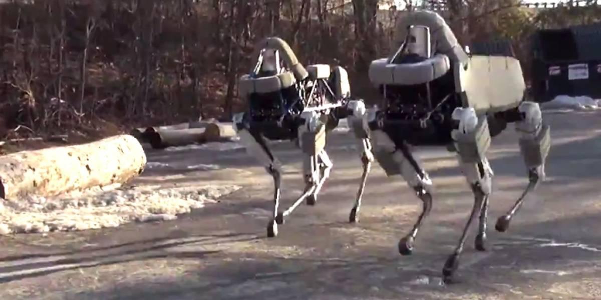 Boston Dynamics muestra el asombroso equilibrio de su último robot