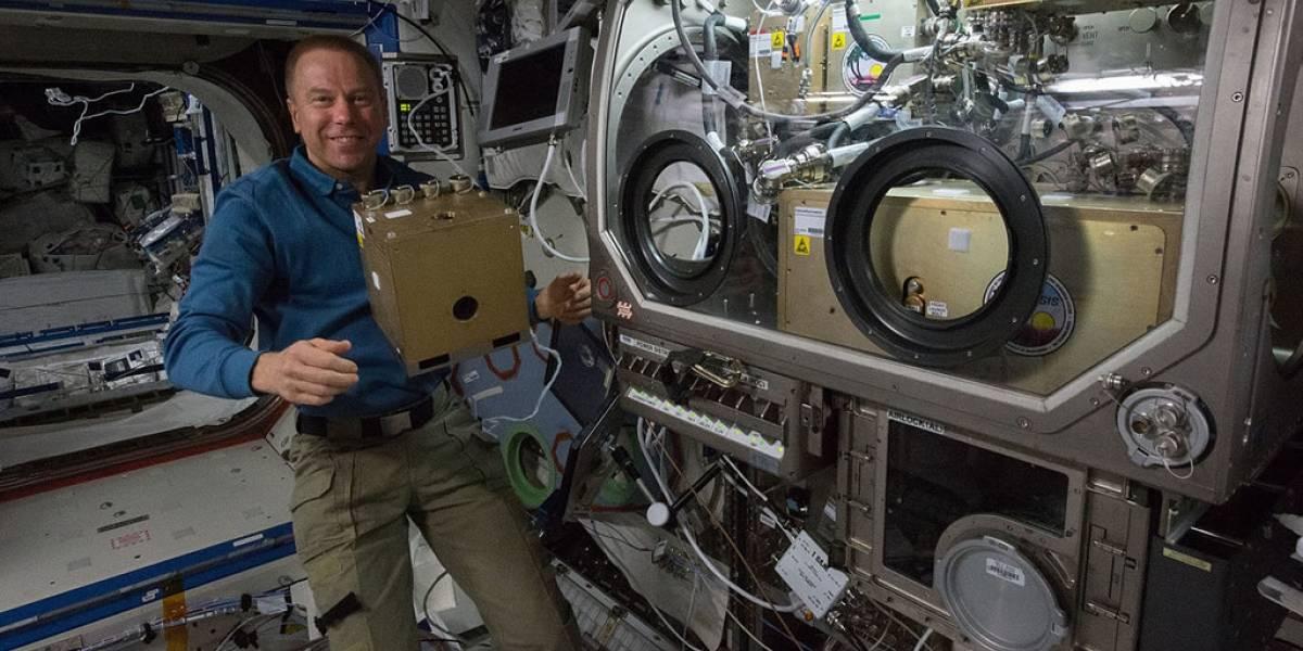 Realizarán contacto con astronautas de Estación Espacial por Facebook Live