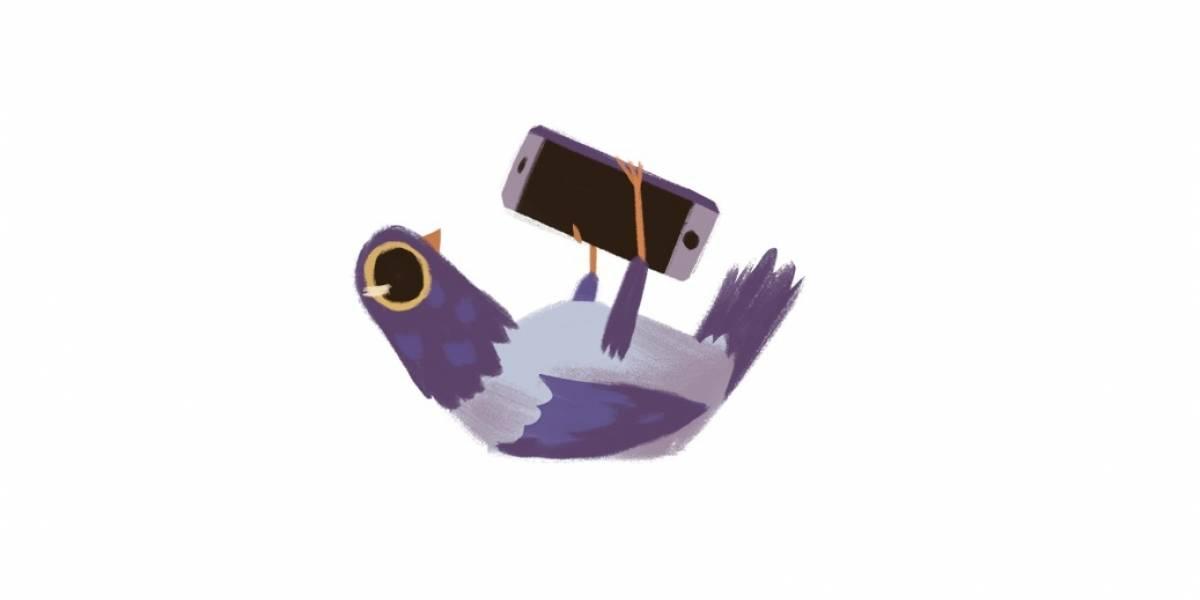 ¿De dónde salió ese pájaro que vemos a cada rato en Facebook?