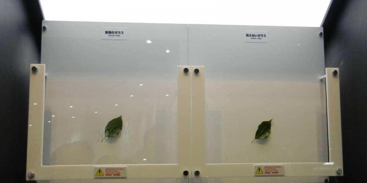 """Inventan vidrio """"invisible"""" que podría ayudar a crear pantallas de mejor calidad"""