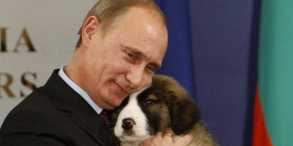 Milicia británica teme que Rusia los deje sin internet cortando cables submarinos