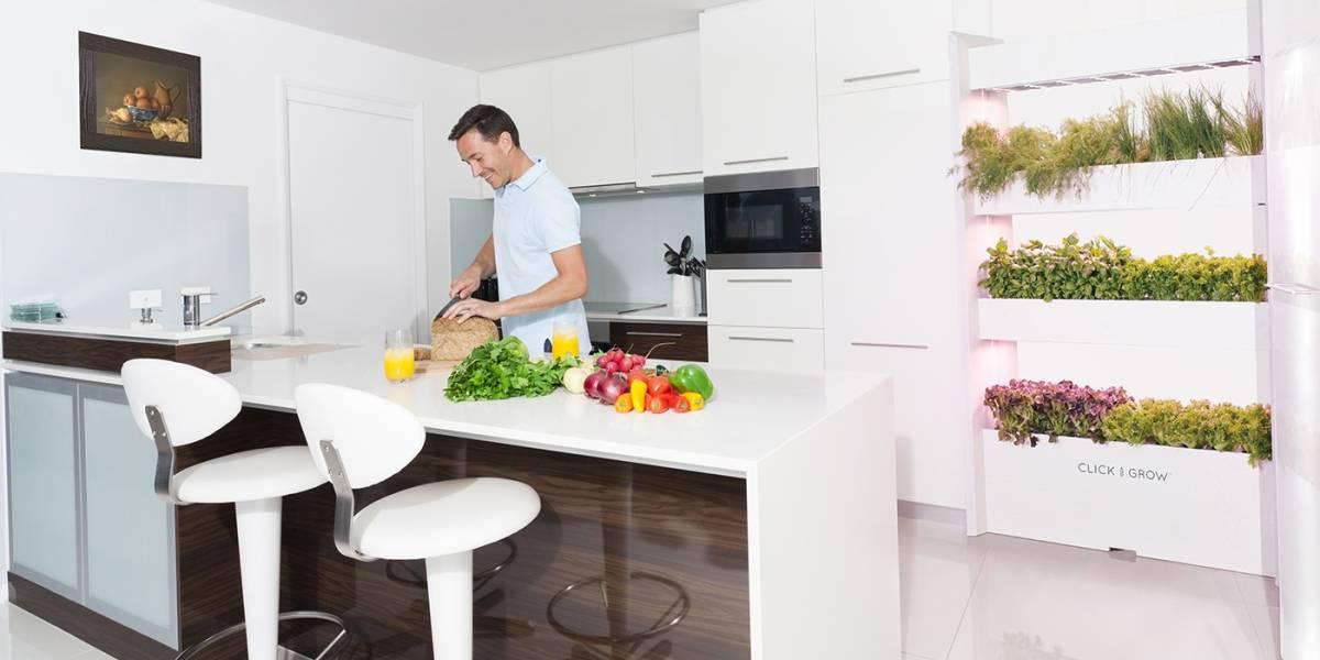 Planta alimentos en la pared de tu casa como si fueras un astronauta